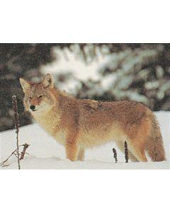 Delta McKenzie skydeskive Coyote 50 x 70 cm